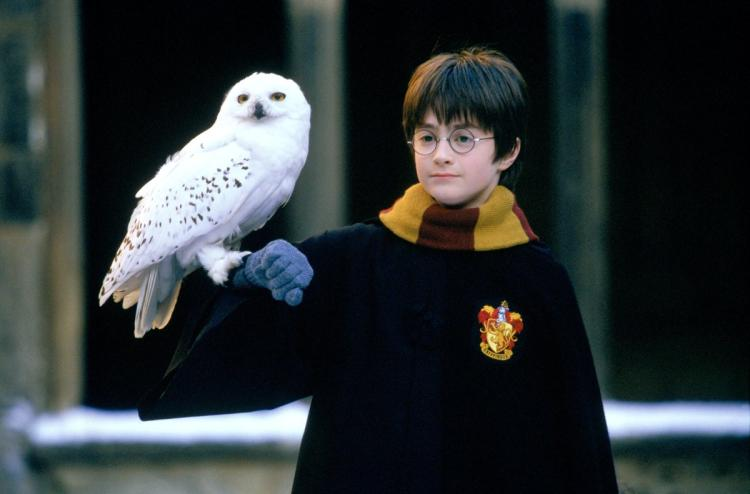 Harry Potter : 20 ans de magie !
