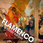 Flamenco l'âme andalouse