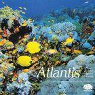CD Atlantis