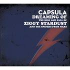 Ziggy Stardust Cover