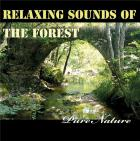 Relaxing sounds of the forest, pure nature