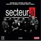 Best of Secteur Ä