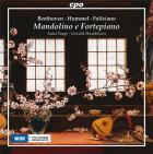 Beethoven, Hummel, Feliziano : oeuvres pour mandoline et pianoforte