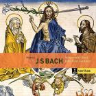 Bach : motets bwv 225-231, cantates bwv 50 & 118