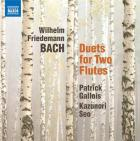 Duets for two flutes