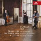 Zemlinsky, Rachmaninov, Arenski : trios pour piano