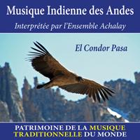 Musique indienne des Andes - Patrimoine de la musique traditionnelle du monde