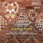 Guided by voices. nouvelle musique pour violoncelle baroque