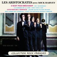 C'est pas méchant - Collection Rock Français