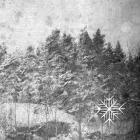 III : winter