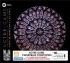Notre-Dame, cathédrale d'émotions