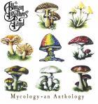 Mycology an anthology