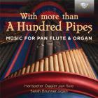 With more than a hundred pipes - musique pour flûte de pan et orgue