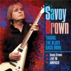 Taking the blues back home - live in America