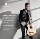 Concertos pour guitare