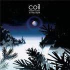 Musick to play in the dark volume 1 | Coil. Musicien