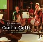 Les violoncelles de Moïta