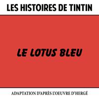 Les Histoires de Tintin : Le Lotus bleu