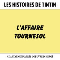 Les Histoires de Tintin : L'Affaire Tournesol