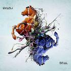 Dual / Smadj, ouds, programmations, compositions, arrangements | Smadj. Compositeur