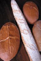 Fonction de nutrition - Site + Réseau