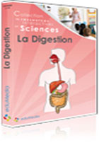 Digestion (La) - Licence Etablissement