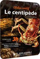 Atelier créatif - Le Centipède