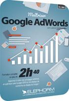 Maîtrisez Google AdWords  Edition 2014