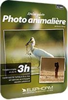 Apprendre la photographie animalière
