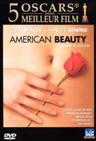 American beauty  |