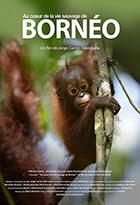 Au coeur de la vie sauvage de Borneo