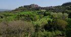 Jardins d'ici et d'ailleurs : Sacro Bosco - Italie |