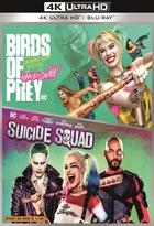 Birds of Prey et la fantabuleuse histoire de Harley Quinn + Suicide Squad
