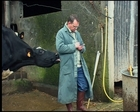 Vaches ne regardent plus passer les trains (Les)