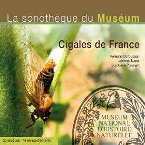 Cigales de france - la sonothèque du muséum | Deroussen, Fernand