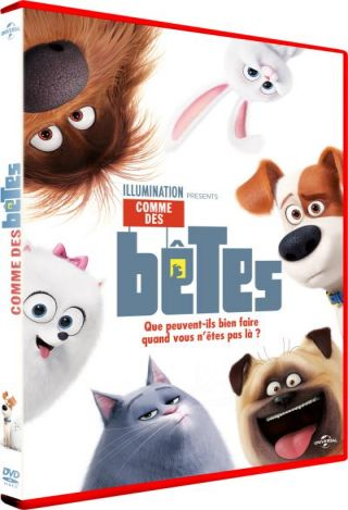 Comme des bêtes. DVD = The Secret Life of Pets / Yarrow Cheney, Chris Renaud, réal. | Cheney, Yarrow. Monteur
