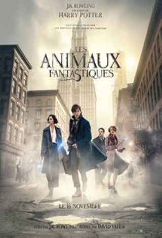 Animaux fantastiques (les). DVD = Fantastic Beasts and Where to Find Them / David Yates, réal. | Yates, David. Monteur