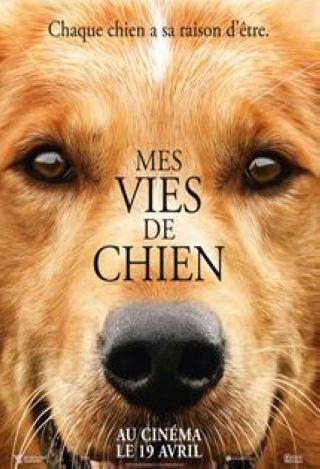 Mes Vies de chien
