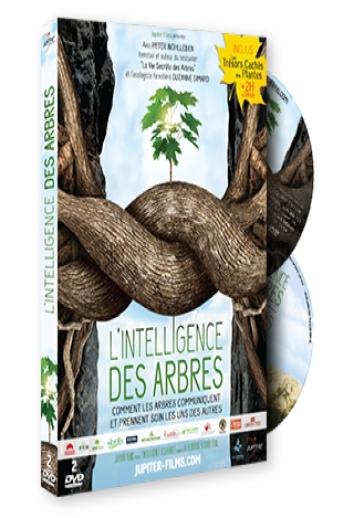 Intelligence des Arbres (L') |